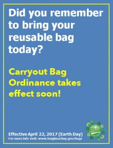 Carryout Bag Ordinance